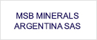 MSB MINERALS ARGENTINA SAS